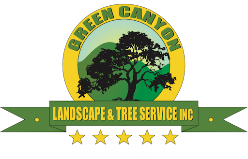 Tree Removal Stump Grinding We Do It Safely For Less Free Estimate 760 420 3753